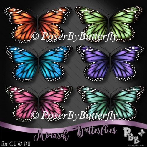 Monarch Butterflies's